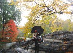 Fall @ Central Park