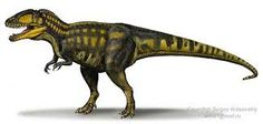 Carcharodontossauro - Pesquisa Google