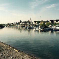 #Hitdorf #Rhein #Rheinufer #Leverkusen
