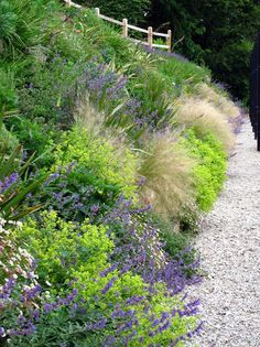 Garden design by Cornwall designer based in Falmouth | Tennis Court Landscaping