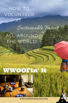 Learn about the many types of volunteer work available (known as WWOOFing) at sustainable farming communities all around the world! How to sign up, questions to ask, and staying safe are all covered.