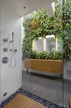 A bathroom designed with living Peace Lily, Peperomia, and Prayer Plant that climb up the wall of the sink. This is my dream bathroom.