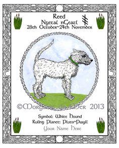 White Hound Reed Celtic Tree Calendar Lunar by MagickMermaid, $20.00