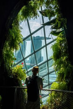 Cloud forest at the Gardens by the Bay in Singapore 🏨 Hotel photos Singapore Travel Tips, Singapore Photos, Singapore Trip, Sands Singapore, Singapore Outfit, Places To Travel, Places To See, Travel Destinations, Singapore Destinations
