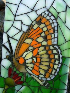 Theona Checkerspot Butterfly Close Up - almost looks like a stained glass window! Stained Glass Designs, Stained Glass Projects, Stained Glass Patterns, Mosaic Patterns, Stained Glass Art, Butterfly Mosaic, Mosaic Birds, Glass Butterfly, Monarch Butterfly