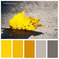 #Farbpalette sonnig, heiter, herbstlich, warm, gelb, grau // © wildpeppermint-design.de