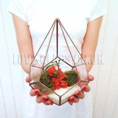 Teardrop-grand-cuivre-geometrique-verre-terrarium-fait-main-Usine-de-lair-planter