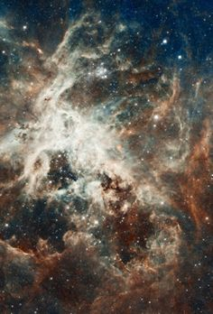 Star formation in the Tarantula Nebula, pieced together by observations from the Hubble Space Telescope.