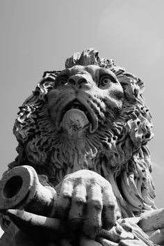 Picture by Joseph J cemetery lion