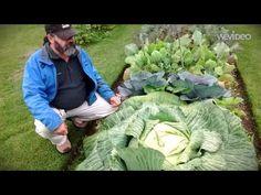 Alaska State Fair Giant Vegetables-3 min version