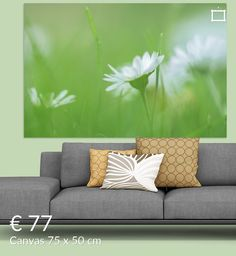 dreaming of daisies van Elly van Veen op canvas, behang en meer Daisies, Couch, Throw Pillows, Canvas, Bed, Furniture, Home Decor, Kunst, Tela