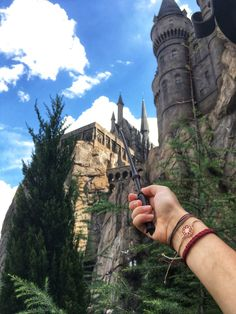 It would actually be a dream come true to go there! Harry Potter Book Covers, Harry Potter Pin, Harry Potter Characters, Harry Potter Universal, Harry Potter Memes, Harry Potter World, Harry Potter Hogwarts, Universal Parks, Slytherin