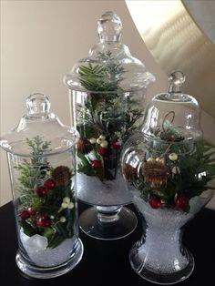 Winter Garden Apothecary Jars