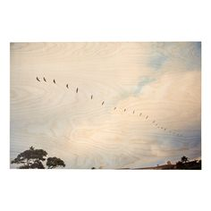 Featuring a gorgeous photograph printed on hand sanded birch wood this artwork brings rustic levity to your home.