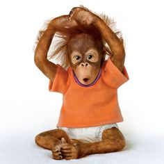 Ashton Drake Who Me Baby Lifelike Poseable Simian Monkey Doll New | eBay