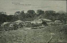 BANJOEWANGI KOFFIE ONDERNEMING KALI KLATTAK. 1921-1923