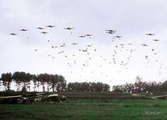 WWII- Elements of the US Airborne Division drop near Nijmegen Netherlands as part of Operation Market Garden 17 September Operation Market Garden, Ww2 Photos, Photos Du, Photographs, Siegfried Line, 82nd Airborne Division, Military Operations, History Online, Paratrooper