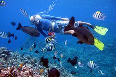 Vanuatu scuba diving - Yes!