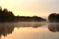 Fog upon lake