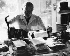 Hemingway & Hemingway Cat