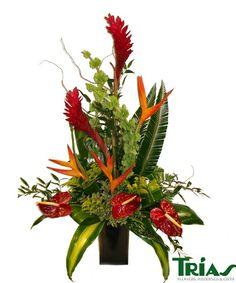 Exotic in a Vase