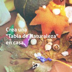 """En tu hogar puedes mantener una """"Tabla de Naturaleza"""" para  enseñarle a tus hijos acerca de las estaciones del año.  #ColegioTrinus #TrinusGuide #WaldorfEducation #Colegio #Guatemala #School #ViveTrinus"""