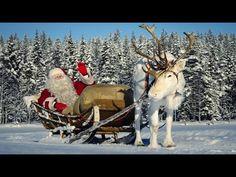 Joulupukki-haastattelu Joulupukin poromaassa