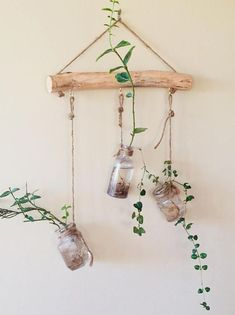 House Plants Decor, Plant Decor, Natural Home Decor, Diy Home Decor, Diy Decoration, Decorations, Hanging Wall Vase, Hanging Plants, Diy Wall
