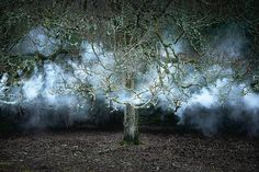 Ellie Davies, a talented multimedia artist in the UK, has spent seven years turning landscapes throughout the UK into beautiful and ghostly works of art.