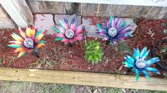 Solar Lights, Flower garden stakes, yard ornaments, soda can flowers, diy solar lights  https://www.etsy.com/listing/463061649/flower-garden-stake-solar-lights-walkway