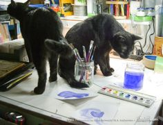 Mewsette inspects the shelf and Giuseppe considers tasting the paint water. The paintings are ignored.