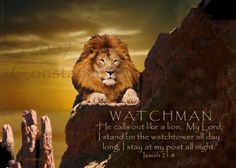 WATCHMAN ~ Isaiah 21:8 ~ Always there watching over us, for HE IS GOD ALMIGHTY!!!!  King of Kings and Lord of Lords!  Yahweh!  Ahhh!