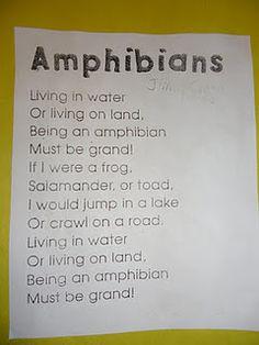 Amphibian song to tune Jimmy Crack Corn