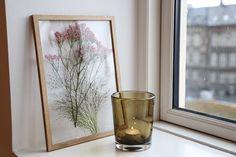 Een van de grootste trends van het jaar in het huis zijn planten – in alle vormen en maten. Passend..
