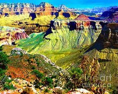 Bob and Nadine Johnston Metal Prints - Grand Canyon View from Kaibab Trail Metal Print by Bob and Nadine Johnston