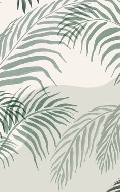 Transform your space into a leafy green paradise with Palmetto. This tropical wallpaper mural is filled with large-scale Areca palm leaves, all hand-painted in inky green and light cream tones that'll give your room a more soothing mood. The background of this mural has a soft paper effect that gives the design more texture, and also features subtle abstract shapes that add to the on-trend style of the mural. Paradise Wallpaper, World Map Wallpaper, Tropical Wallpaper, Forest Wallpaper, Botanical Wallpaper, Beach Wallpaper, Green Wallpaper, Modern Wallpaper, New Wallpaper