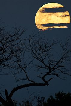 Beautiful Nature (vurtual: Once in a Blue Moon (by snolic…linda)) Look At The Moon, Over The Moon, Luna Moon, Moon Moon, Moon Dance, Shoot The Moon, Sun Moon Stars, Beautiful Moon, Beautiful Friend