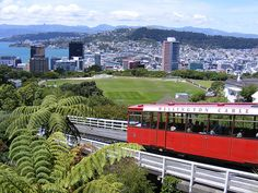 Wellington, New Zealand: where the CSC Study Abroad Coordinator studied abroad! Most Beautiful Cities, Wonderful Places, Beautiful World, New Zealand Itinerary, New Zealand Travel, Places Ive Been, Places To Visit, Wellington New Zealand, New Zealand Houses