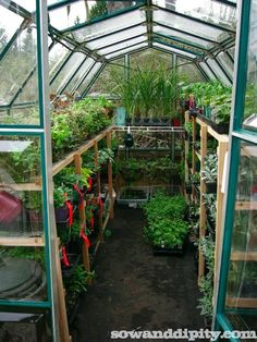 ^^Look at the webpage to read more about greenhouse panels. Check the webpage for more** Viewing the website is worth your time. Small Greenhouse Kits, Greenhouse Panels, Diy Greenhouse Plans, Greenhouse Growing, Greenhouse Gardening, Greenhouse Film, Greenhouse Shelves, Homemade Greenhouse, Flower Gardening