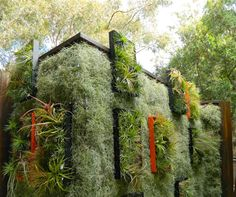 Mind-blowing #GreenWall project by @airplantman designed to cover #solarpanels.