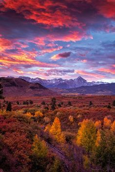 Mountain Autumn Sunrise, San Juan Mountains, Colorado