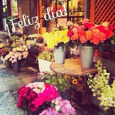 Eligiendo unas flores para poner en casa ¡Feliz domingo!   #ideassoneventos #blog #bloglovin #organizacióndeventos #comunicación #protocolo #imagenpersonal #bienestarybelleza #decoración #inspiración #bodas #buenosdías #goodmorning #sunday #domingo #happy #happyday #felizdía #flores #flowers #freshflowers