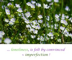 ... #loneliness, is felt by convinced ~ #imperfection !