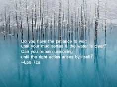 Do you have the patience to wait...