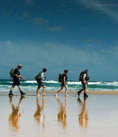 Australian Gourmet Traveller travel feature on the Great Ocean Road walk. The Places Youll Go, Places To See, International Flight Tickets, Online Travel Agent, Travel News, Travel Planner, To Infinity And Beyond, Adventure Is Out There, Travel Agency