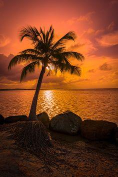Sunset by Pasquale Ricchetti - Photo 83259843 / 500px