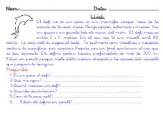 Lectures comprensives primer cicle primària