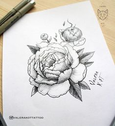 sketch peony - sleeve                                                                                                                                                                                 More