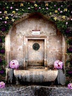fountain niche .  fern & orchid covered rock wall . Fountain of Youth, Hungary