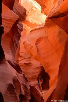Sunlight streams down into the narrow slot canyon. Antelope Slot Canyon, Page, Arizona Slot Canyon, Grand Canyon, Places To Travel, Places To See, Beautiful World, Beautiful Places, Utah Vacation, Lower Antelope Canyon, Cities